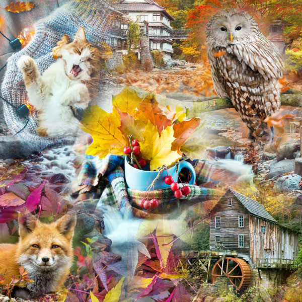 Collage with some of the pictures of the new pack Fall colors 2