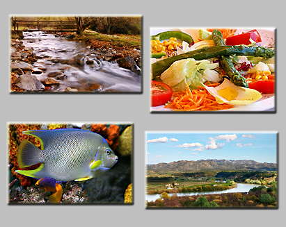 thumbnails of the puzzles Puzzles: Bridge, River, Fish and Salad