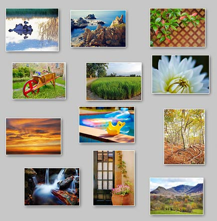 thumbnails of the puzzles Puzzles: Palm trees on the horizon, Duck in pond, Red dawn, Delicate, Rubber duck, Door and flowers, Rocks in the sea, Cow, Intertwined branches, Meeting point, Wheelbarrow, Lattice