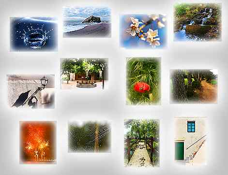 thumbnails of the puzzles Puzzles: Splash, Stone in sea, Almond flowers, Facade, Fountain, Path, Poppy and ear, Shade of lamp, Streams, To the willow, Web and deb, Fireworks