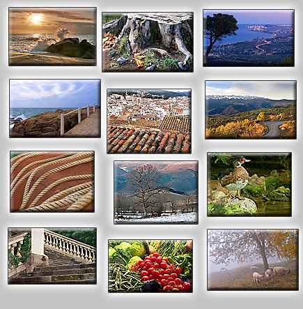 thumbnails of the puzzles Puzzles: Stone stairs, Road in mountains, Sheeps in haze, Cold trunk, Sunsea, Handrail, CIty at night (Barcelona), Ropes, Duck in stone, Three horses, Roofs, Vegetables